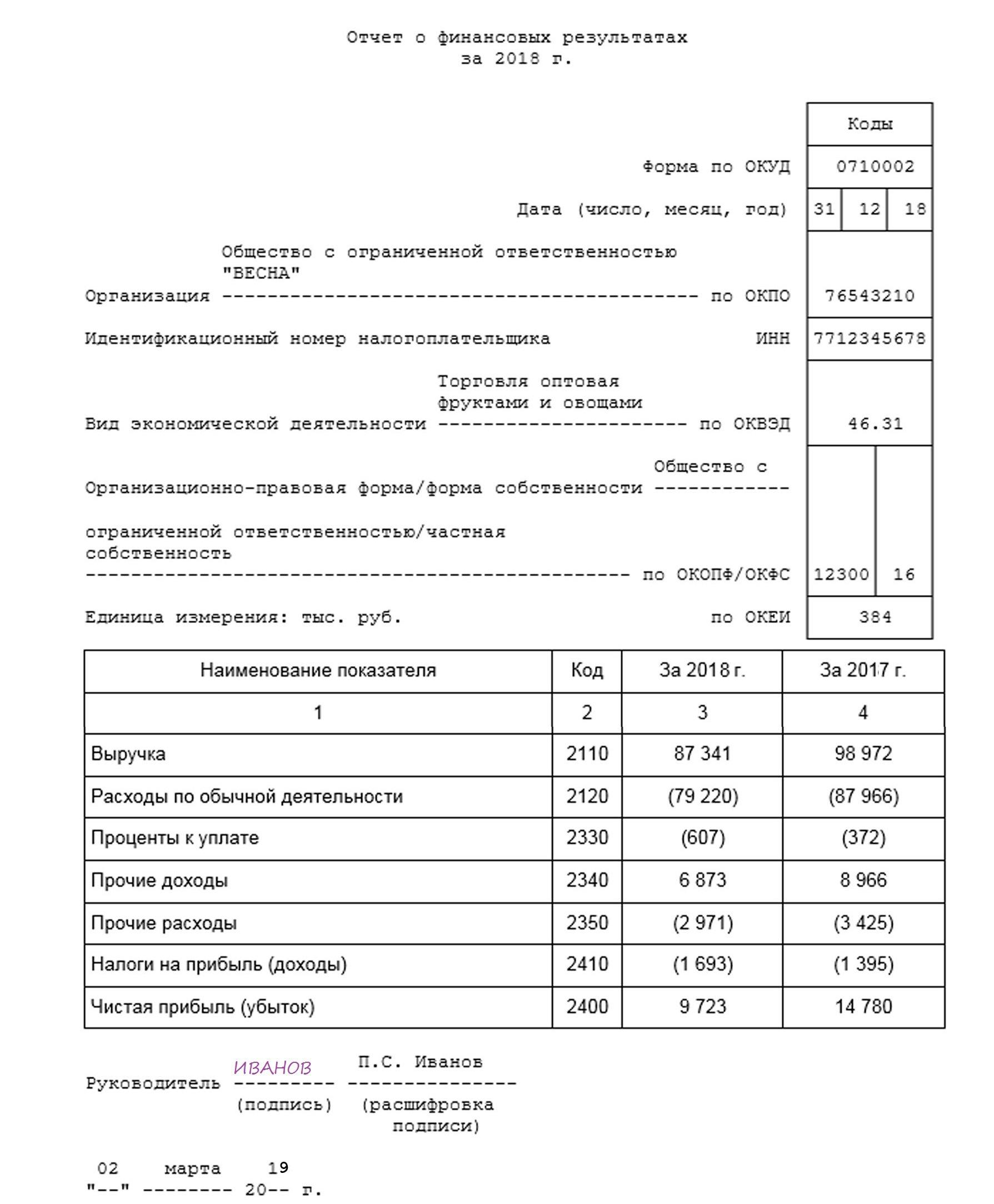 пример финансового отчета некоммерческой организации